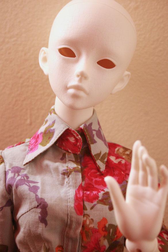 Fritillaria says hi.